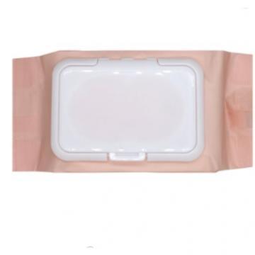 OEM Customized Alcohol Free Antibacterial Wet Wipes Single Sachet 50PCS