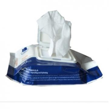 Sanitizer Antibacterial Disinfectant Alcohol Wet Wipe Hand Cleaning
