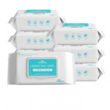 Spot Foreign Trade English Ce Qualification Containing 75 Degrees Table Alcohol Sanitary Wipes Germicidal Wash Wipes 50 Pieces